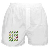 16 Birdorable Parrots Boxer Shorts