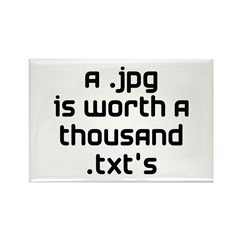 A .jpg is Worth 1000 .txt's Rectangle Magnet
