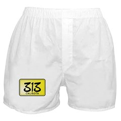 313 License Plate Boxer Shorts