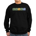 CSINY Made of Elements Sweatshirt (dark)