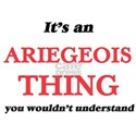 It's an Ariegeois thing, you wouldn T-Shirt