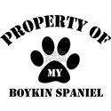 Property of My Boykin Spaniel