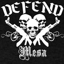 Defend MESA ARIZONA T-Shirt